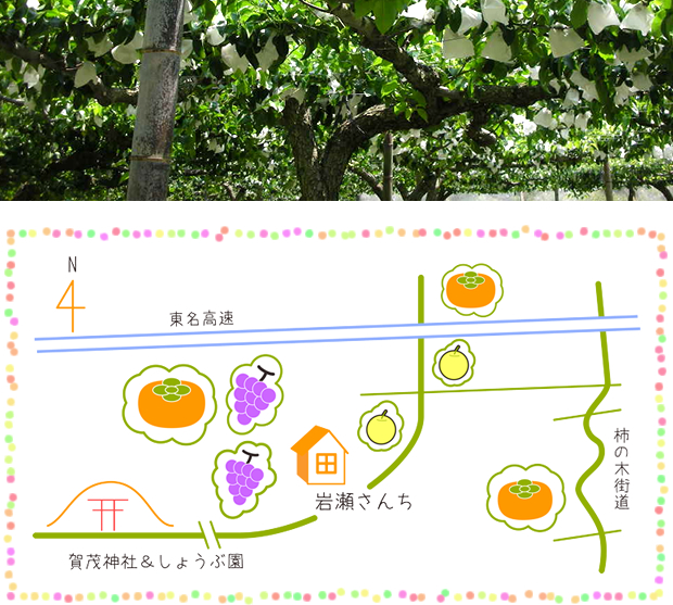 これが岩瀬果樹園です。