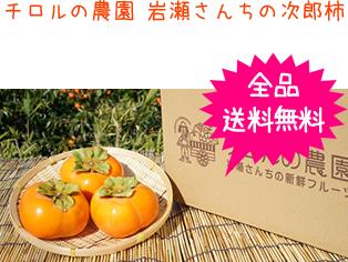 チロルの農園 岩瀬さんちの次郎柿