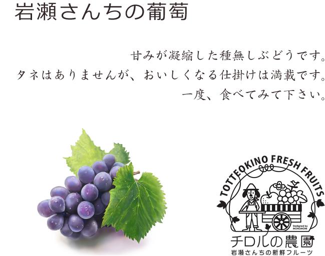 岩瀬さんちの葡萄
